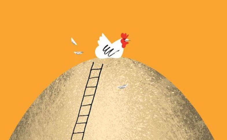 bài học từ con gà mái đẻ trứng